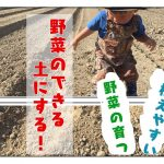 固い粘土質の畑を、野菜のできる土にする4つのステップ