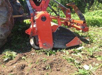固い粘土質の畑を野菜の作れる畑にしていく