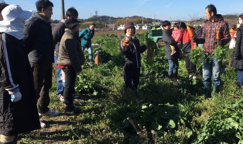 「さいこうやさい」冬の半田の収穫祭