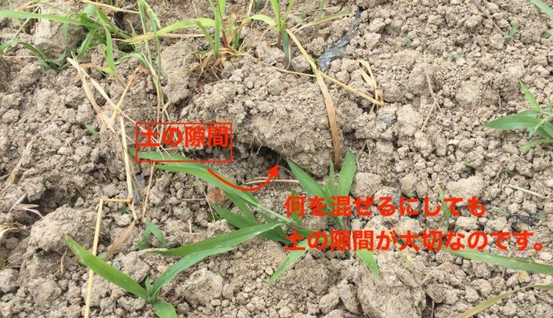 粘土質の土をふかふかに柔らかくするには、隙間が必要です。