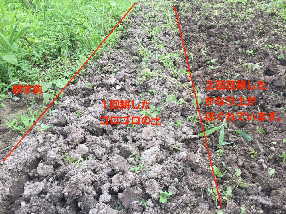 土を耕す前、1回目、2回目と、土が細かくなっているのがわかります。