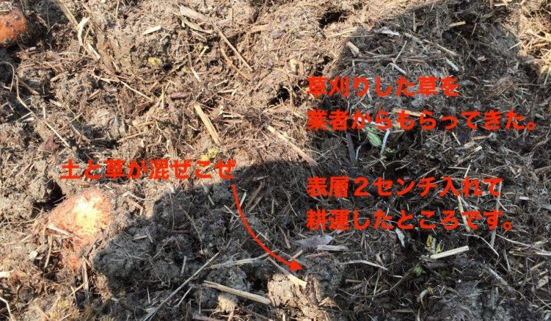 草刈りした草を業者からもらって混ぜた。半年で粘土質の土が柔らかくなる