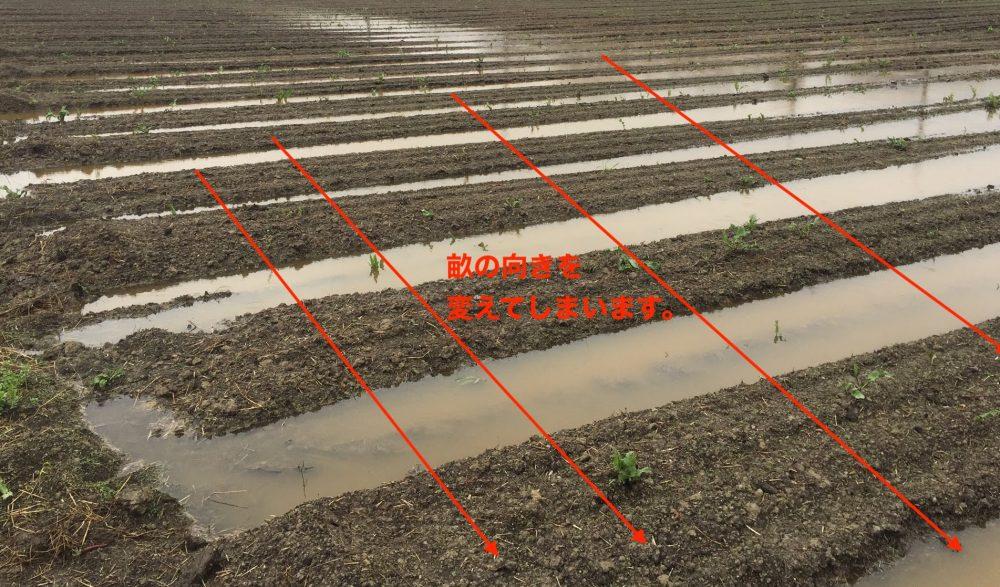次回の作付けから水抜きしない畑にするには、畝の向きを90度かえる。