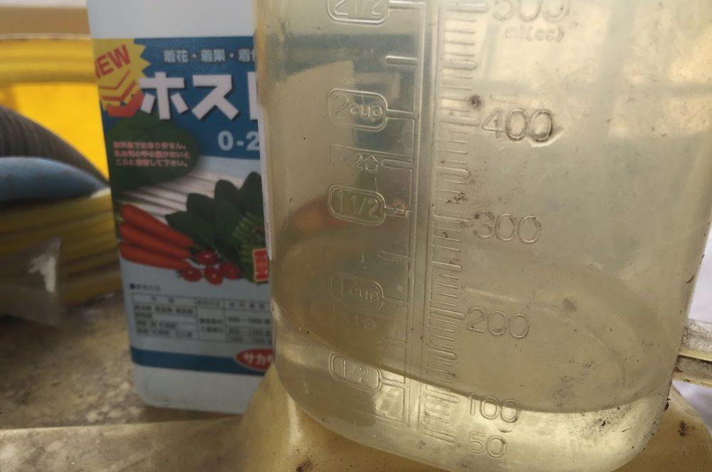 液肥の倍率は1500倍。計量カップに3.3ml測って、5リットルに混ぜる