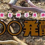 堆肥を使う価値がある。使い方も解説