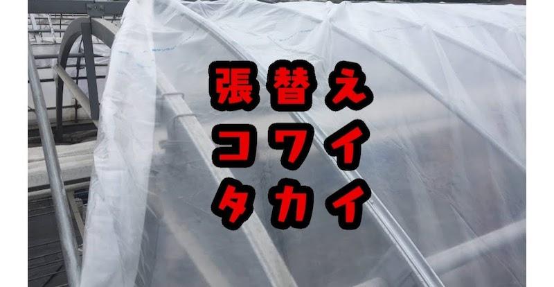 ビニールハウスの張り替えは高い。でも10万円でできました。